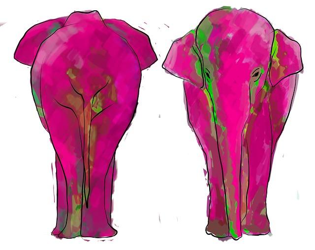 elephant-826851_640