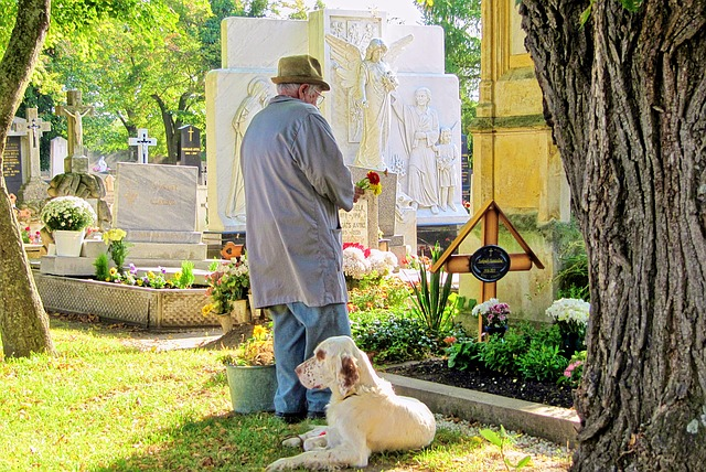duelo luto funeral pérdida muerte perro cementerio psicologo gijon